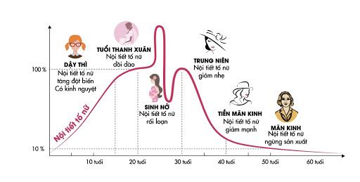 biểu đồ nội tiết tố ở nữ giới sau sinh